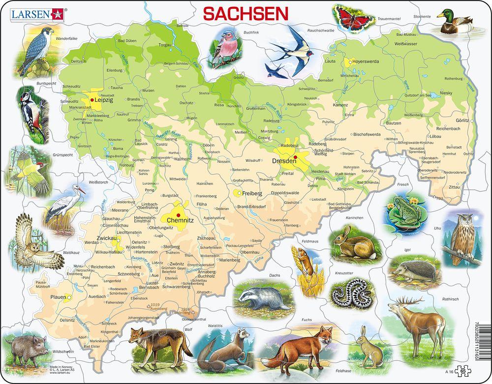 A16 - Sachsen (Tysk)
