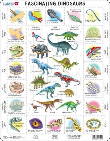 HL9 - Fasinerende dinosaurer