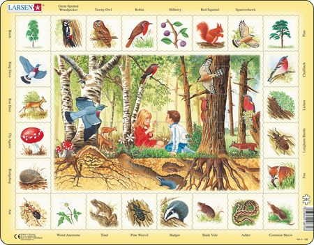NA4 - Nature Puzzle: Forest