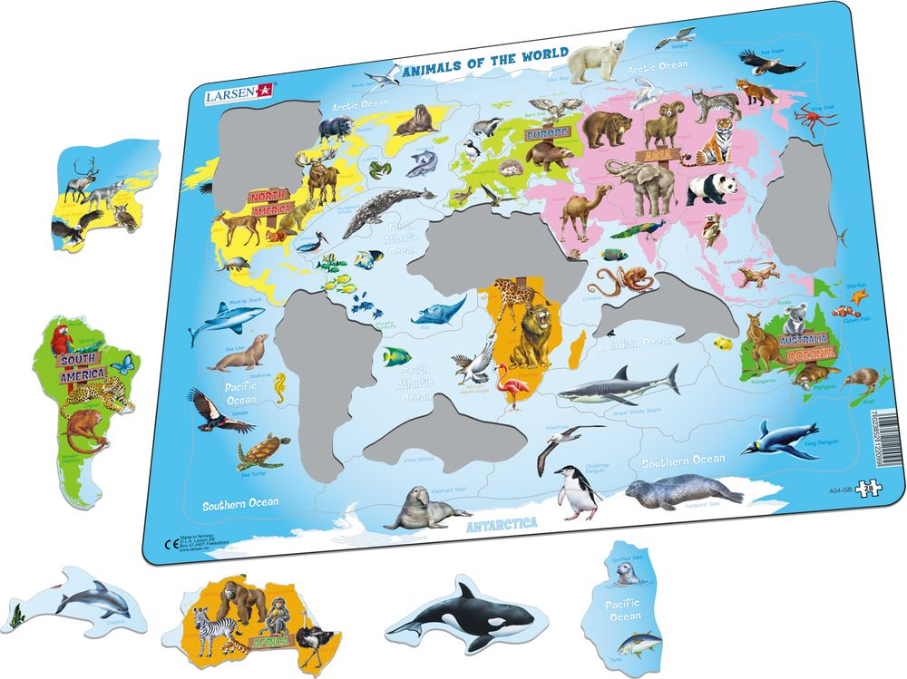 A34 - Animals of the World (Illustrative image 1)