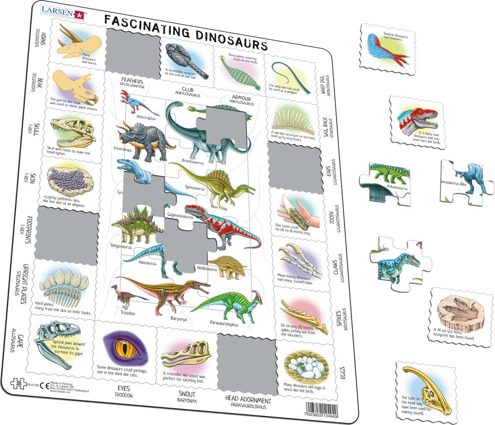 HL9 - Fascinating Dinosaurs (Illustrative image 1)