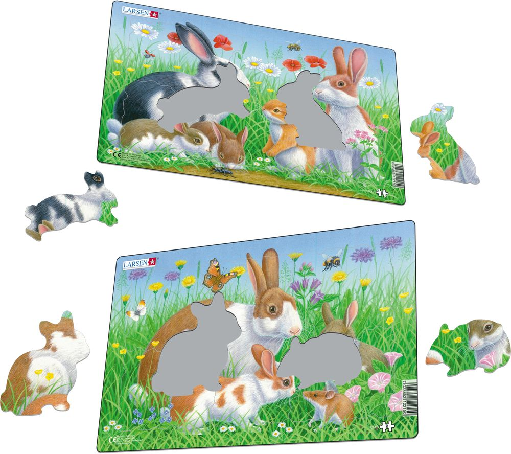 CU3 - Rabbits (Illustrative image 1)