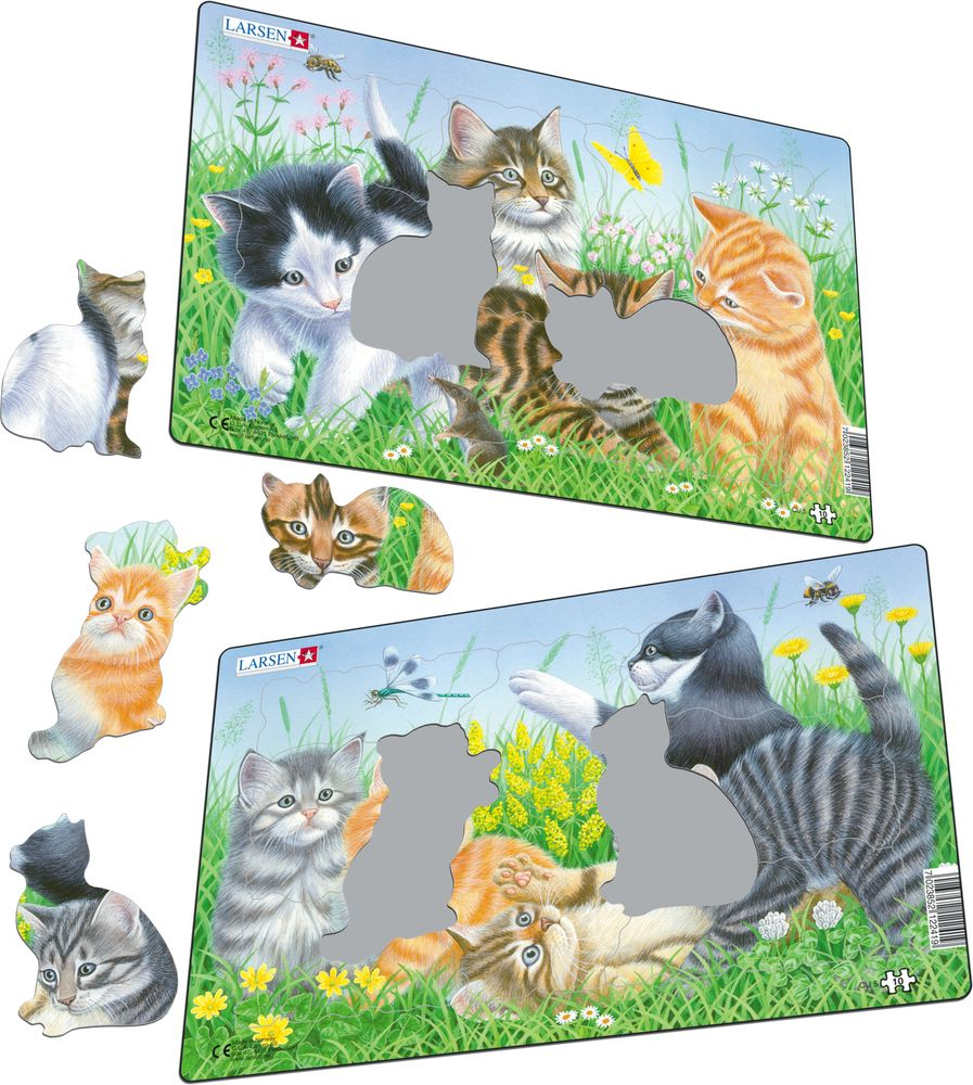 CU5 - Cute Kittens (Illustrative image 1)