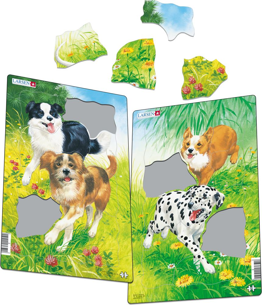 H19 - Dogs (Illustrative image 1)