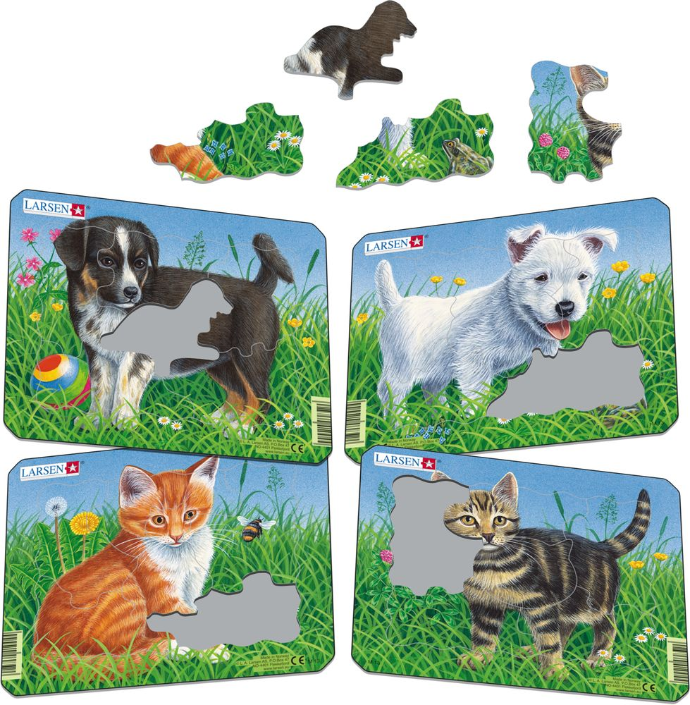 M13 - Cats and Dogs (Illustrative image 1)