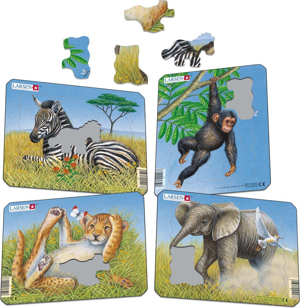 M9 - Løve, Elefant, Ape, Sebra (Illustrasjonsbilde 1)