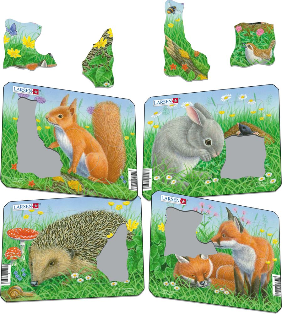 Z12 - Rabbit, Squirrel, Hedgehog, Fox (Illustrative image 1)