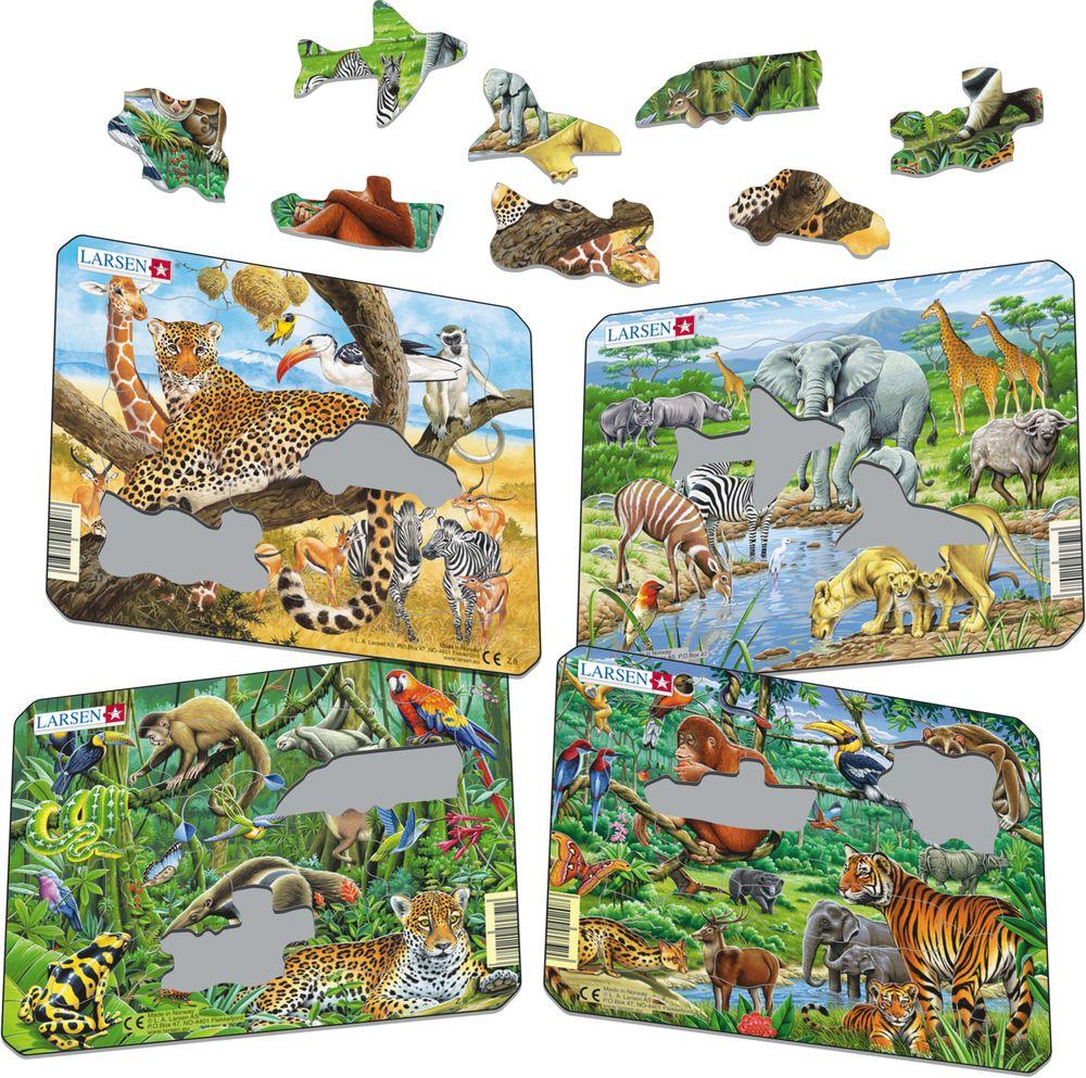Z8 - Eksotiske dyr (Illustrasjonsbilde 1)