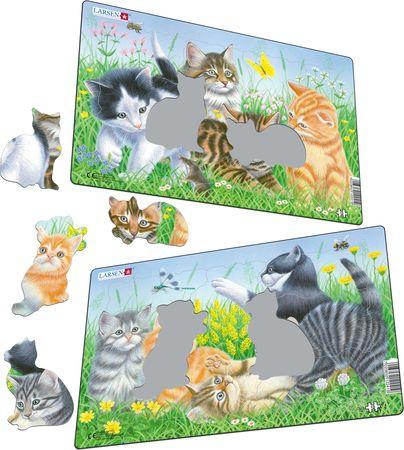CU5 - Søte kattunger