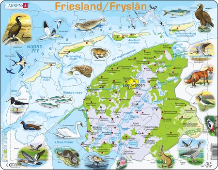 K80 - Friesland Physical with Animals