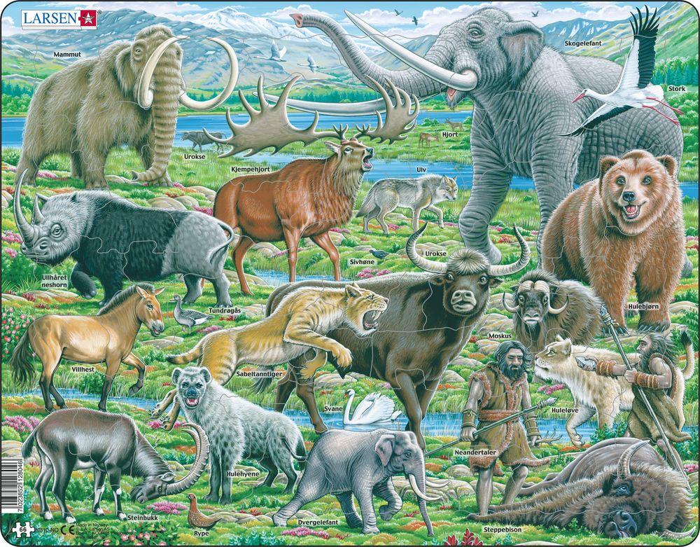 NB10 - Dyreliv på Neandertalernes tid (Norsk)