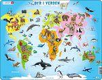 A34 - Dyr i verden