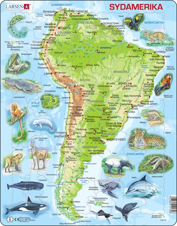 A25 - South America Physical Map
