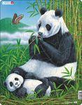 D5 - Panda
