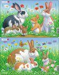 CU3 - Kaniner