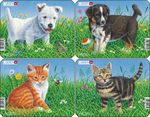 M13 - Cats and Dogs