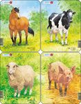 V1 - Animal Drawings. Horse, Cow, Sheep, Pig