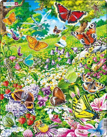FH28 - Sommerfugler i blomstereng